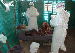 27-11-2008web_Ebola1600-238.jpg
